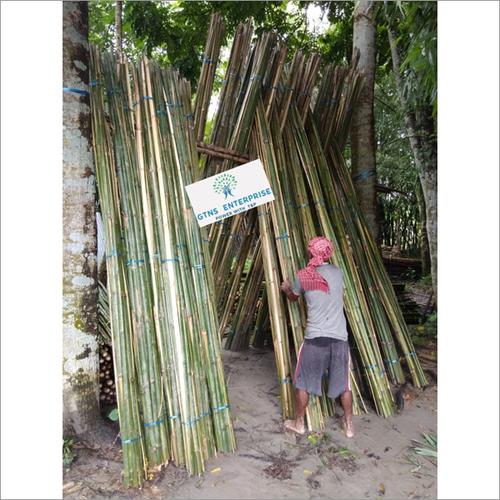 Bamboo Chips / Banzi / Fatti