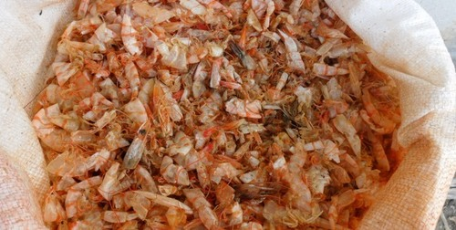 Dried Shrimp Shell in Brazil with the high quality