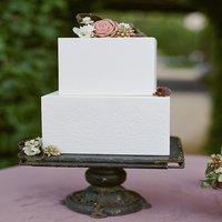 Cake Bases & Cake Bottom
