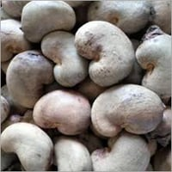 Raw Cashew