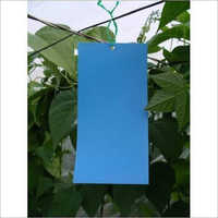 Blue Sticky Trap