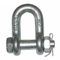 Industrial D Shackle