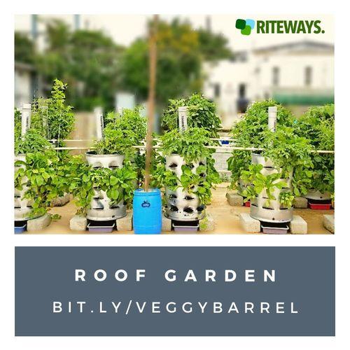 veggyBARREL Roof Garden Container