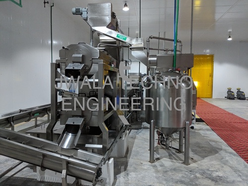 Mango Processing Machines