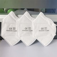 N95 Non Woven  Face Mask With Valve, Filter : Electrostatic