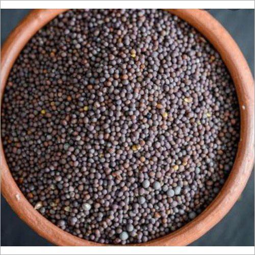 Black Mustard Seed