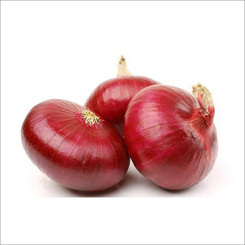 Bhima Super Red Onion Seeds