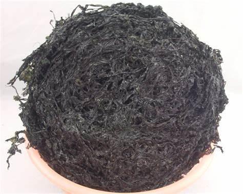High Quality Good Price Seaweed & Laver & Nori