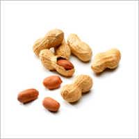 Whole Peanut