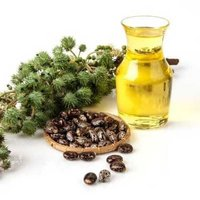 Castor Carrier Oil (Cold Pressed)