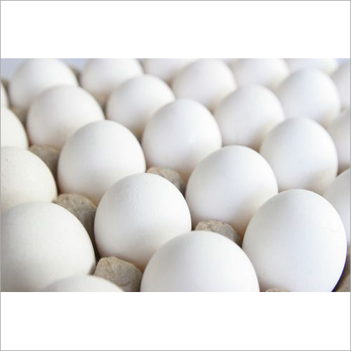 Fresh White Poultry Eggs