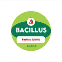 Bacillus Subtilis Fertilizer