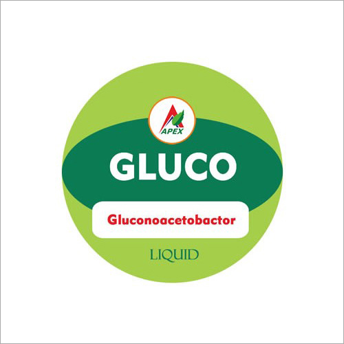 Gluconoacetobactor Fertilizer
