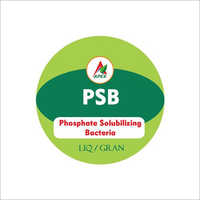 Phosphate Solubilizing Bacteria Fertilizer
