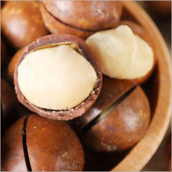 Fresh Macadamia Nuts