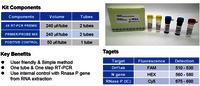 COVID Test Kit