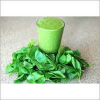 Spinach Extract