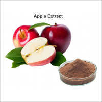 Apple Powder Extract