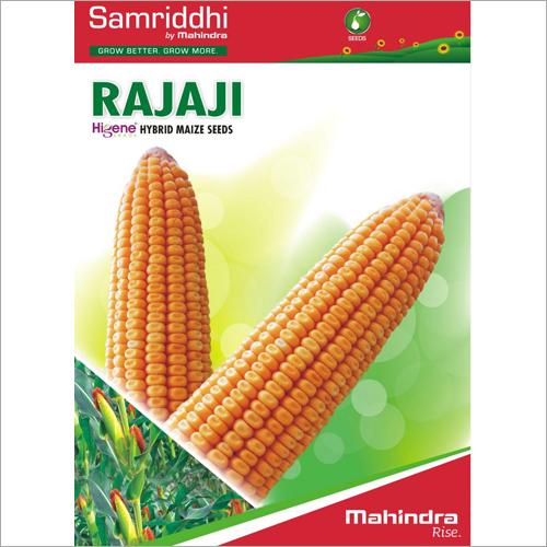 Rajaji Hybrid Maize Seeds