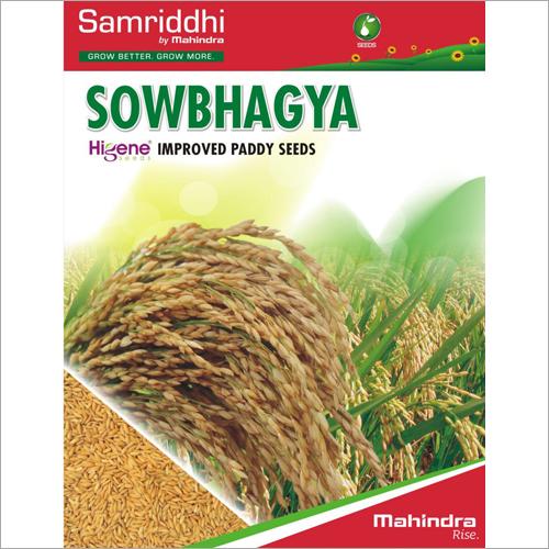Sowbhagya Improved Paddy Seeds