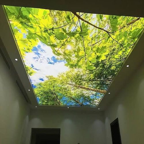 Shanghai Foxygen PVC stretch ceiling texture film LED Light Price buy online DIY Night sky design popular sale in Mumbai