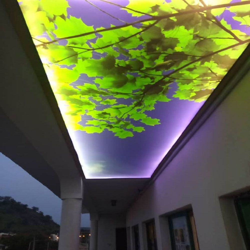 Shanghai Foxygen PVC Stretch Ceiling Texture Film LED Light DIY Night Sky Design
