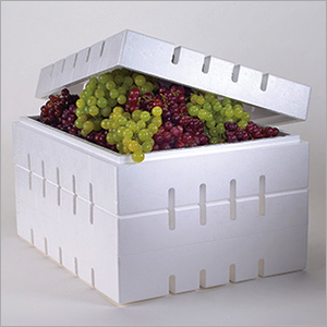 9.2 Kg Grapes Thermocol Box
