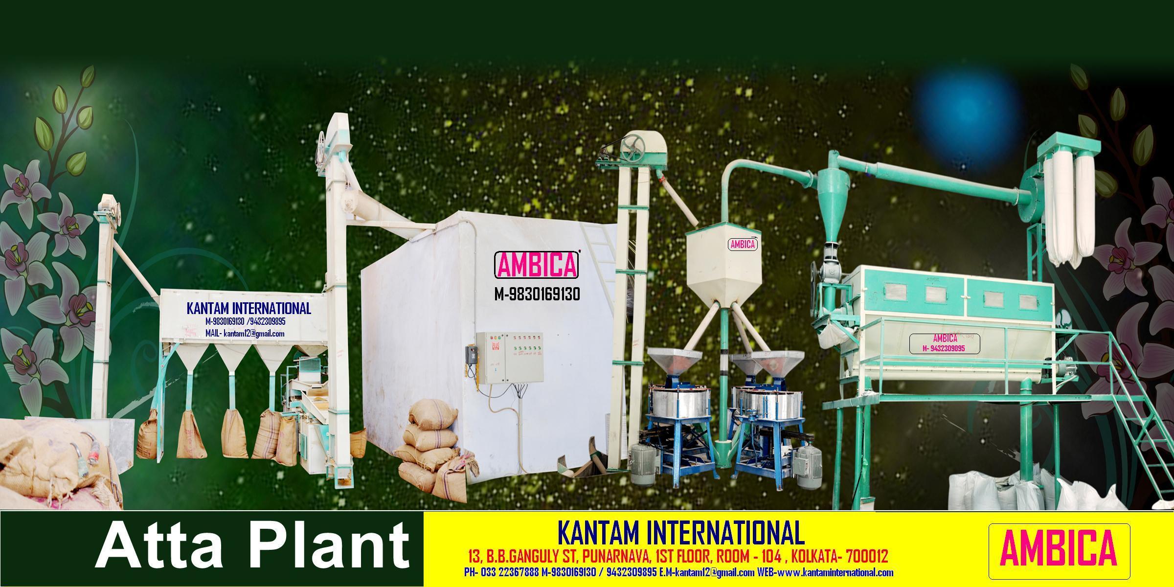 Atta Plant