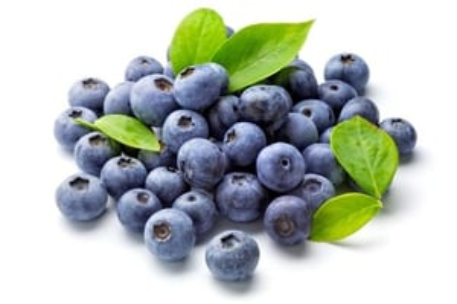 Blue Berry Liquid Extract - Vaccinium Corymbosum