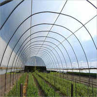 Greenhouse UV Film