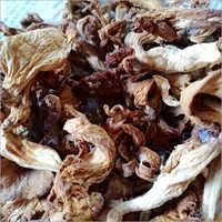 Dry Mushroom