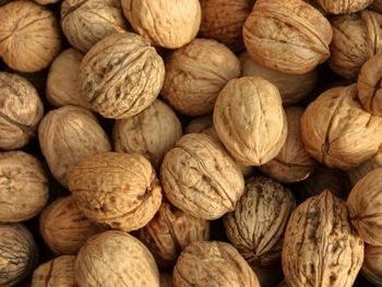 Dry Walnut