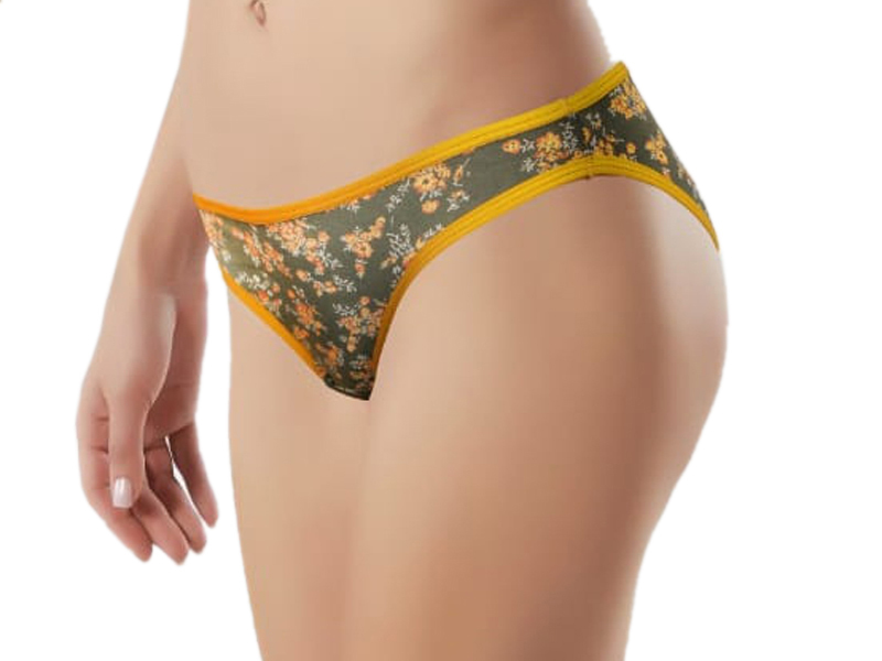 Ladies  Printed Panty
