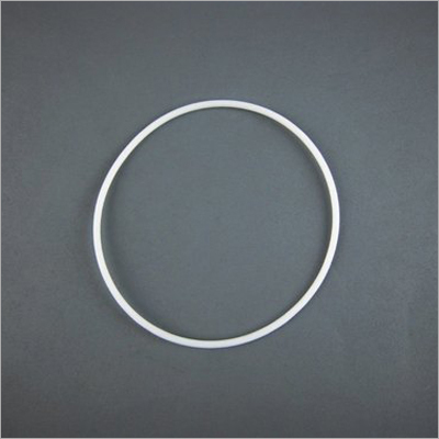 PTFE Solid Ring Gasket