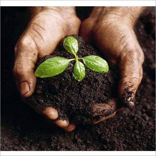 Bio Enriched Organic Manure