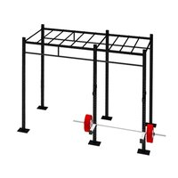 Crossfit Monkey Bridge Rig 10 Feet