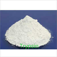 Trypsin Enzyme Powder