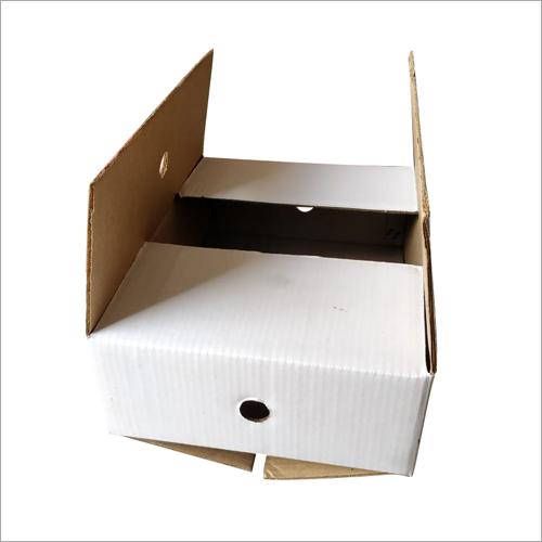 White Plain Corrugated Box