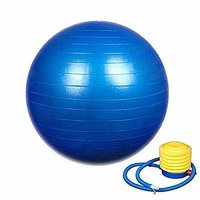 Gym Exercise Ball