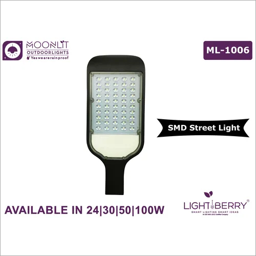 Lightberry Street Light ML-1006