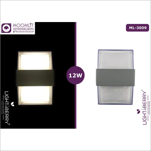 Lightberry Outdoor wall light ML-3009 12