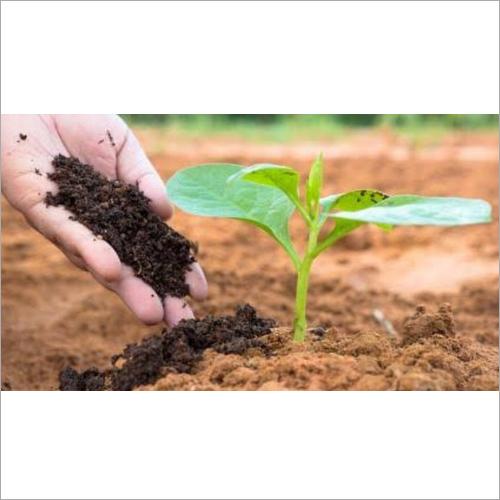 Bio Compost Organic Fertilizer