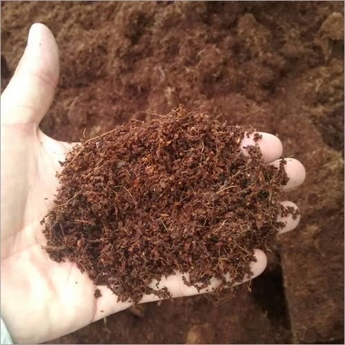 Coco Peat Soil