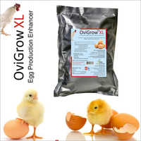 Ovigrow XL - Egg Production Enhancer Powder