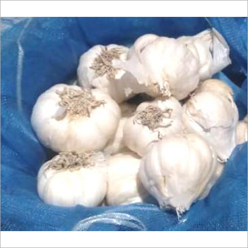 White Raw Garlic