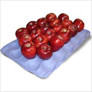 30 Compartment Apple Paper Tray