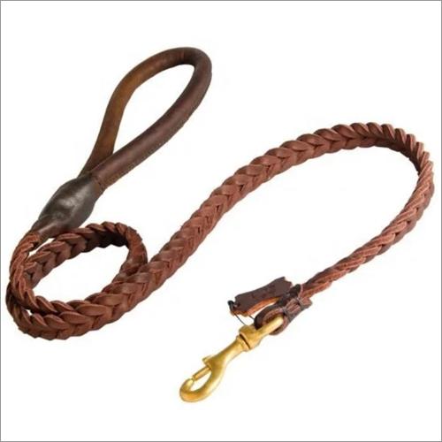 Horse Braided Lead