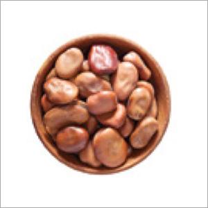 Dried Fava Beans
