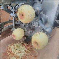 Automatic Apple Peeling Coring Cutting Machine
