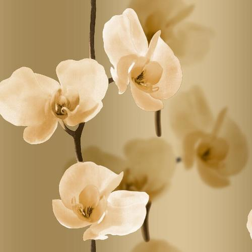 GOLDEN FLOWER WALL